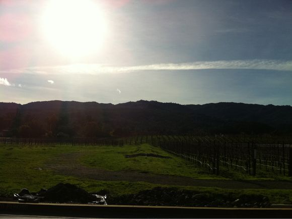It's a napa kind of day